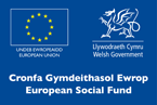 ESF - Welsh Government